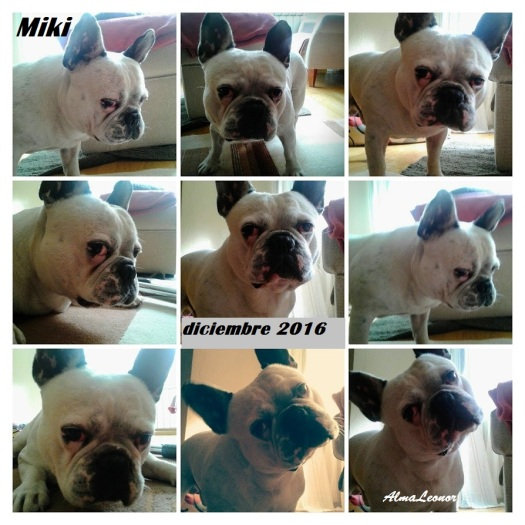 miki-collage