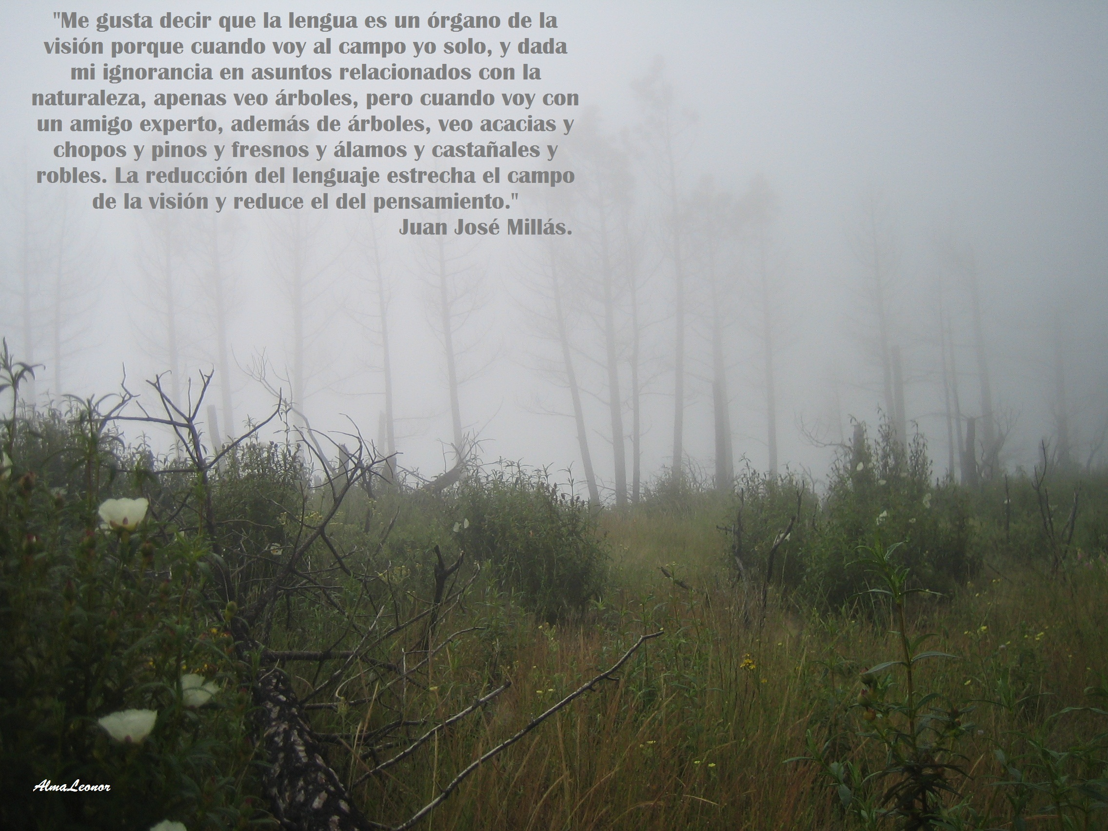 sierra-gata-junio2008-con-texto