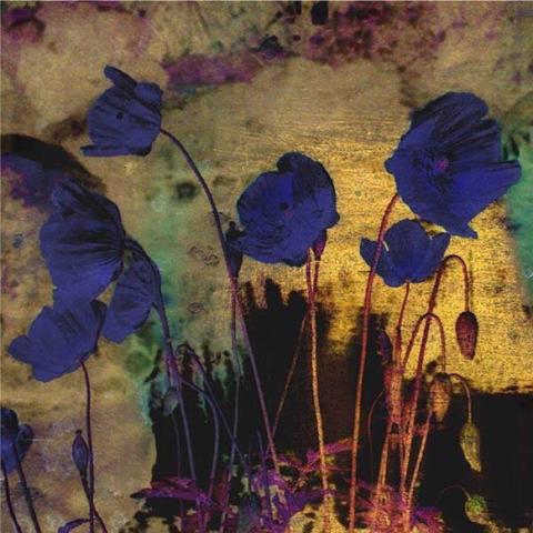 azul-brujas_odilon-redon-frances-1840-1916-amapolas-azules