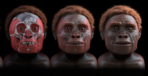 homo_floresiensis_06
