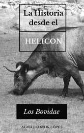 La historia desde el helicon_4en blanco_imgen